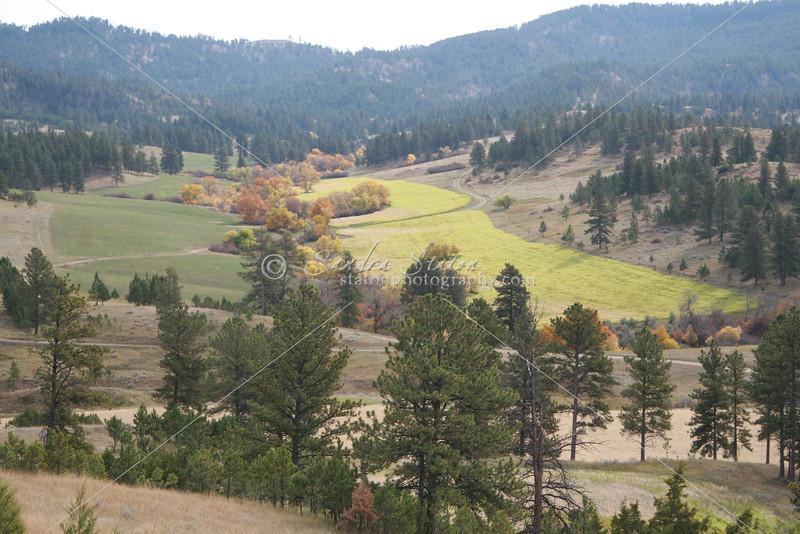 Mountain View_SS4039