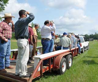 Field tours included presentations on indiangrass, switchgrass, cover crops, plant ecotypes, pollinator plants and wildlife food plots during the East Texas Plant Materials Center field day in Nacogdoches.<br /> NRCS photo by Beverly Moseley.
