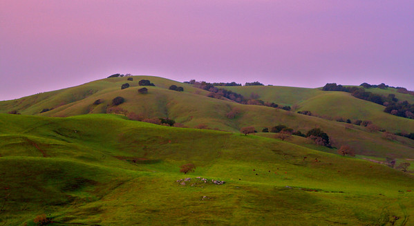 p IMG_8553 hills with purple sky p
