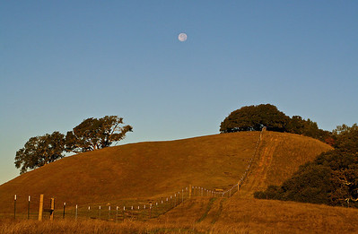 p IMG_5686 Moon Over Hill p