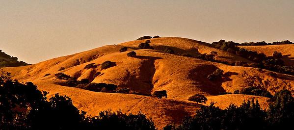 Hills Orange