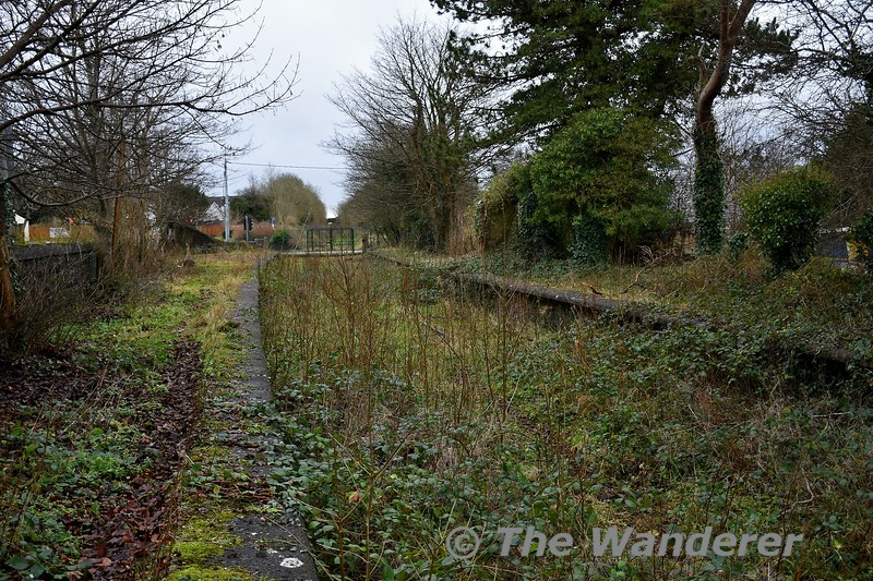 The disused Tobercurry Station on the Western Rail Corridor between Claremorris and Collooney. The station opened in November 1895 by the Waterford & Limerick & Western Railway incursion in Midland Great Western territory. The station lost its passenger service in June 1963 but remained open for freight until November 1975. Station area. The station building was demolished in the late 1980's for a new road to be built. Sun 05.01.20