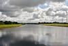 Looking back along the headrace canal towards Parteen Wier and Killaloe. Mon 15.08.17