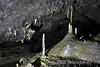 Crag Cave, Castleisland, Co. Kerry. Mon 06.06.16