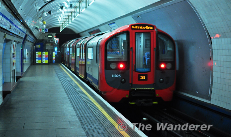 11025 brings up the rear of a Victoria Line train to Walthamstow Central. Sat 20.11.10