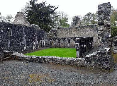Portumna Castle grounds. Tues 24.04.18