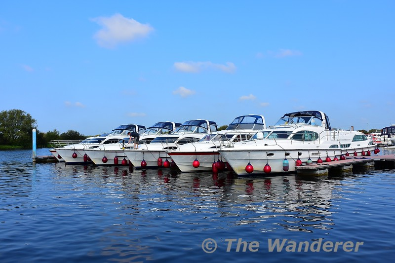 Silverline boats lined up at their base in Banagher. Sat 28.08.21