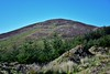 The Knockanroe Wood Loop combines forest and open mountain in the heart of the Silvermines Mountains. The views are simply outstanding on clear days. Sat 03.04.21