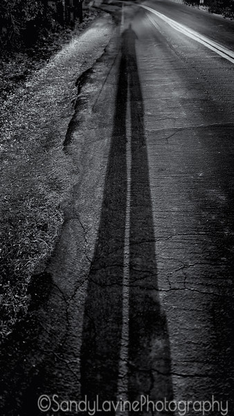 Long Shadow
