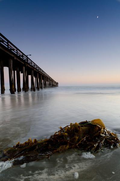 Cayucos Pier<br /> Cayucos, CA