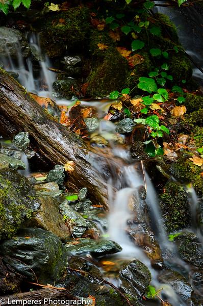 Colorful Creek<br /> Mt. Baker