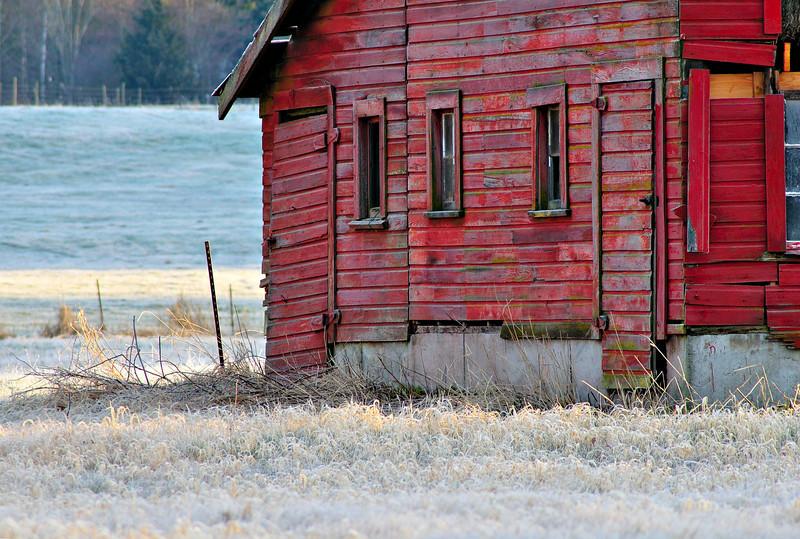 Frosty Morning<br /> Whatcom County, WA