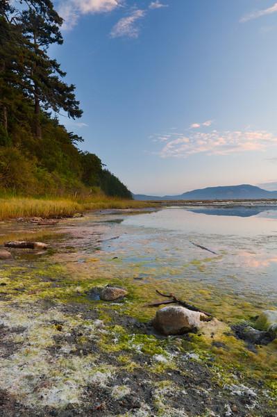 Spencer's Spit Marsh<br /> Lopez Island, Washington
