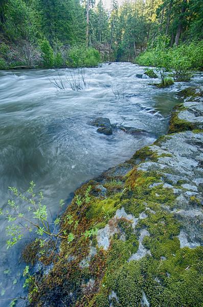 Rogue River Calm