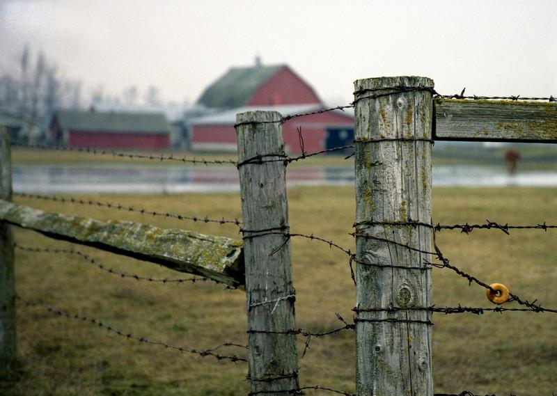 Fenceline<br /> Whatcom County, WA