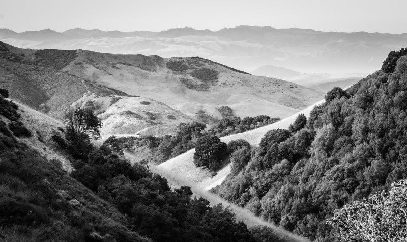 Rolling Hills<br /> Central Coast, California