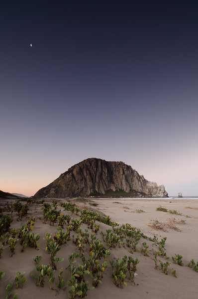 Morro Rock Night Sky