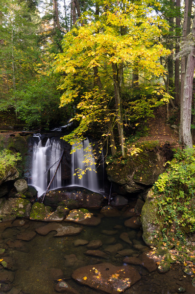 Whatcom Falls<br /> Bellingham, WA
