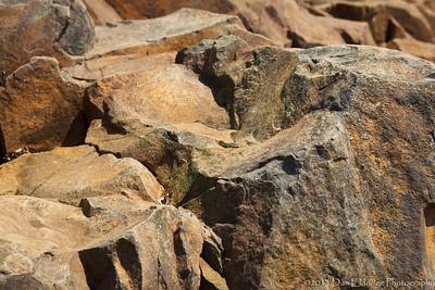 Watchung Basalt