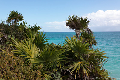 View of the Carribean Sea from the Mayan Ruins @ Tulum, Quintana Roo, Mexico
