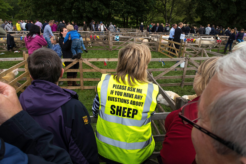 The Moorcock Show 2016  .