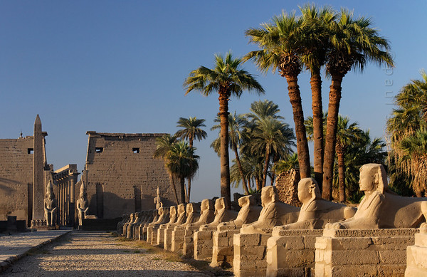 12-calendar-egypt-luxor  Ancient avenue, lined with sfinxes, connecting Luxor Temple (pictured) with Karnak Temple at 3 km. It was the route taken by a joyous procession during the Opet Festival, a yearly feast of rebirth and re-coronation of the pharao during the New Kingdom. Photo Paul Smit.
