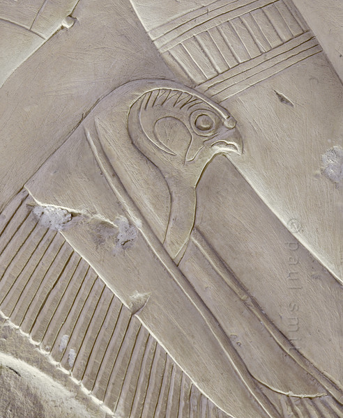 [Egypt 29962] 'Falcon in Ptah-Sokar Chapel at Abydos.'