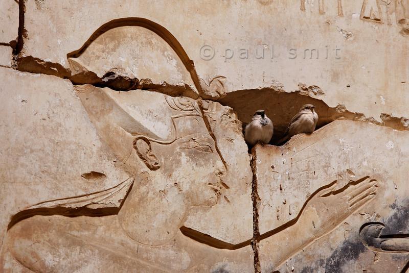 [Egypt 29975] 'Ramses II talking to birds at Abydos.'