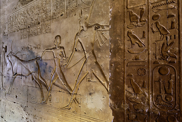 [Egypt 29970] 'Corridor of the Bull at Abydos.'