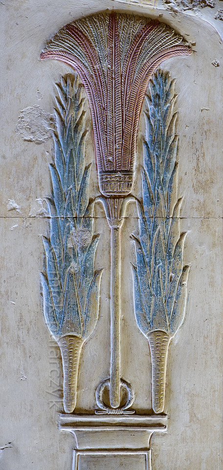 [Egypt 29893] 'Lettuces of Min at Abydos.'