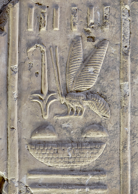 [Egypt 29958] 'Bee and rush hieroglyph at Abydos.'