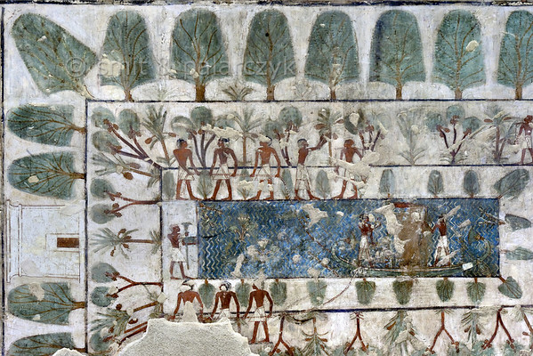 "[EGYPT 29364] 'Garden in Rekhmire's tomb at Luxor.'  	This garden, painted on one of the walls of Rekhmire's tomb, has a central pool on which a boat with the statue of Rekhmire is towed by two groups of three men, probably as part of the funeral rites. It is also possible that the scene takes place during the yearly Beautiful Festival of The Valley, during which relatives take the cult statue of the deceased from his tomb so that it can take part in outdoor activities. It is not clear whether the building on the left is his home or his tomb. The outer rim of the garden and banks of the pond are planted with sycomore figs. The zone in between is planted with date and dom palms. Rekhmire was an 18th dynasty vizier (viceroy) of Southern Egypt, mayor of Thebes and steward of the Amon Temple at Karnak during the reigns of Thutmosis III and Amenhotep II. His tomb (TT 100) is located in the Sheikh Abd el Qurnah Necropolis on the Westbank at Luxor and is one of the socalled ""Tombs of the Nobles"". Photo Mick Palarczyk and Paul Smit."