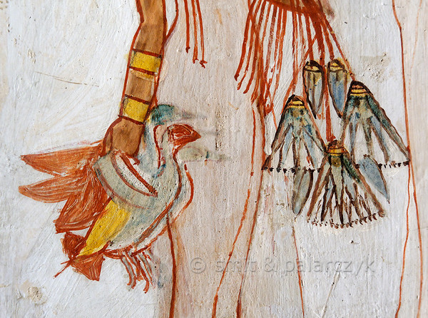 """[EGYPT 29323] 'Girl with lotus flowers in Menna's tomb at Luxor.'  A mural detail in the tomb of Menna shows a young girl carrying lotus flowers and the ducks that her father Menna has caught while hunting in a papyrus swamp. Menna was an 18th dynasty inspector of estates and overseer of harvests and his tomb (TT 69) can be found in the Sheikh Abd el Qurnah Necropolis on the Westbank at Luxor. It is one of the socalled """"Tombs of the Nobles"""" and dates to the end of the reign of Thutmosis IV and the beginning of the reign of Amenhotep III. Photo Mick Palarczyk and Paul Smit."""