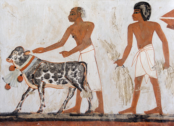 """[EGYPT 29324] 'Herdsman with calf in Menna's tomb at Luxor.'  Leading a procession of offering bearers a herdsman with a receding hairline is guiding a calf, the neck of which is decorated with a lotus flower. The scene can be found on one of the walls of the tomb of Menna. Menna was an 18th dynasty inspector of estates and overseer of harvests. His tomb (TT 69) is located in the Sheikh Abd el Qurnah Necropolis on the Westbank at Luxor. It is one of the socalled """"Tombs of the Nobles"""" and dates to the end of the reign of Thutmosis IV and the beginning of the reign of Amenhotep III. Photo Mick Palarczyk and Paul Smit."""