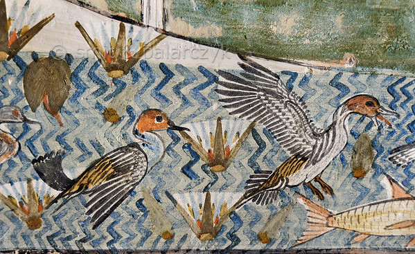 """[EGYPT 29321] 'Ducks in Menna's tomb at Luxor.'  A pool with ducks and lotus flowers is part of a papyrus swamp hunting scene in the tomb of Menna. Menna was an 18th dynasty inspector of estates and overseer of harvests. His tomb (TT 69) can be found in the Sheikh Abd el Qurnah Necropolis on the Westbank at Luxor. It is one of the socalled """"Tombs of the Nobles"""" and dates to the end of the reign of Thutmosis IV and the beginning of the reign of Amenhotep III. Photo Mick Palarczyk and Paul Smit."""