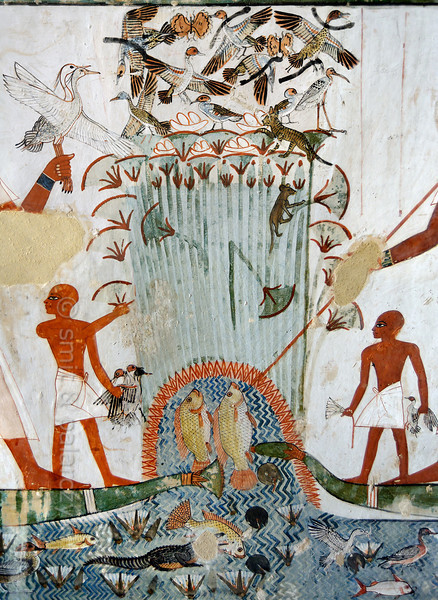 "[EGYPT 29319] 'Papyrus swamp in Menna's tomb at Luxor.'  	This papyrus swamp is part of a hunting scene in the tomb of Menna. Ducks and other birds are nesting in the swamp and at least five nests with eggs are depicted. The latter are about to be plundered by a striped cat and a rodent. On the left Menna (only partly visible here) is standing on a papyrus boat and is holding two white birds which are possible used to lure other birds. He is hunting the fowl in the swamp with black throwing sticks, five of which are depicted among the startled birds. On the right a second representation of Menna (only his arm is visible) on a boat is spearing fish. Standing before both representations of Menna are his sons, holding the caught birds and a lotus flower.  The papyrus swamp was seen as a mythological place of regeneration and fertility. One of the wishes for the afterlife was phrased as follows: ""May you pluck papyrus plants, rushes, lotuses and lotus buds. There shall come to you waterfowl in thousands, lying on your path; you cast your throwstick at them, and it means that a thousand are fallen at the sound of its wind . . . ."" Menna was an 18th dynasty inspector of estates and overseer of harvests. His tomb (TT 69) can be found in the Sheikh Abd el Qurnah Necropolis on the Westbank at Luxor. It is one of the socalled ""Tombs of the Nobles"" and dates to the end of the reign of Thutmosis IV and the beginning of the reign of Amenhotep III. Photo Mick Palarczyk and Paul Smit."