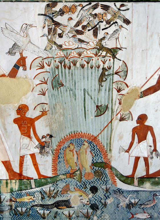 """[EGYPT 29319] 'Papyrus swamp in Menna's tomb at Luxor.'  This papyrus swamp is part of a hunting scene in the tomb of Menna. Ducks and other birds are nesting in the swamp and at least five nests with eggs are depicted. The latter are about to be plundered by a striped cat and a rodent. On the left Menna (only partly visible here) is standing on a papyrus boat and is holding two white birds which are possible used to lure other birds. He is hunting the fowl in the swamp with black throwing sticks, five of which are depicted among the startled birds. On the right a second representation of Menna (only his arm is visible) on a boat is spearing fish. Standing before both representations of Menna are his sons, holding the caught birds and a lotus flower.  The papyrus swamp was seen as a mythological place of regeneration and fertility. One of the wishes for the afterlife was phrased as follows: """"May you pluck papyrus plants, rushes, lotuses and lotus buds. There shall come to you waterfowl in thousands, lying on your path; you cast your throwstick at them, and it means that a thousand are fallen at the sound of its wind . . . ."""" Menna was an 18th dynasty inspector of estates and overseer of harvests. His tomb (TT 69) can be found in the Sheikh Abd el Qurnah Necropolis on the Westbank at Luxor. It is one of the socalled """"Tombs of the Nobles"""" and dates to the end of the reign of Thutmosis IV and the beginning of the reign of Amenhotep III. Photo Mick Palarczyk and Paul Smit."""