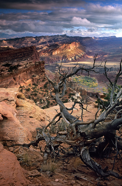 [USA.UTAH 28212] 'View from Navajo Knobs.'  From Navajo Knobs, north of Fruita in Capitol Reef National Park, hikers are rewarded with a fine view of the surroundings. Photo Mick Palarczyk.