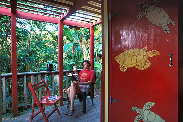 [ANTILLES.SABA 25.499] 'Turtle cottage.'	 The simple wooden cottages at the Ecolodge have been decorated by local artist Heleen Cornet. The Ecolodge is an ecological oriented accommodation in the rain forest of Mt. Scenery's southern slope. Photo Mick Palarczyk.