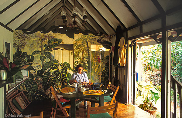 [ANTILLES.SABA 25.491] 'Tropical dining room.'	 At the restaurant of the Ecolodge, a small hotel on the southern slope of Mt. Scenery, the rain forest just ends on the doorstep. Inside the dining room the tropical atmosphere is continued in the murals by local artist Heleen Cornet. Photo Mick Palarczyk.