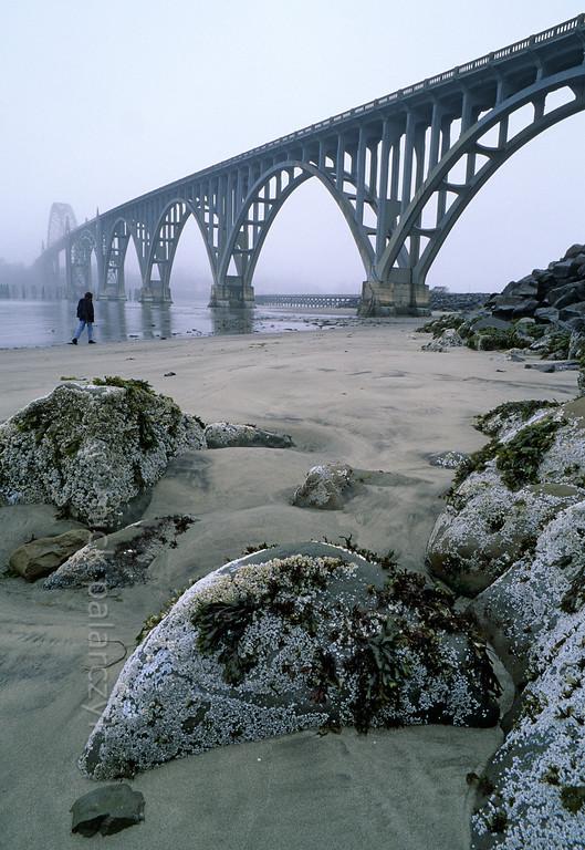 [USA.OREGON 28772] 'Yaquina Bay Bridge.'  The Yaquina Bay Bridge (1936) spans the mouth of the Yaquina River at Newport. Photo Mick Palarczyk.
