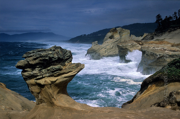 [USA.OREGON 28763] 'Cape Kiwanda.'  	The sandstone escarpment of Cape Kiwanda, just north of Pacific City, is a good place to experience spectacular wave action if seas are rough. The mushroom shaped rock is a product of wind erosion. Photo Mick Palarczyk.