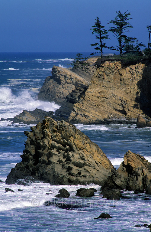 [USA.OREGON 28799] 'Coast near Cape Arago.'  The rough Pacific coastline north of Cape Arago (west of Coos Bay). Photo Mick Palarczyk.