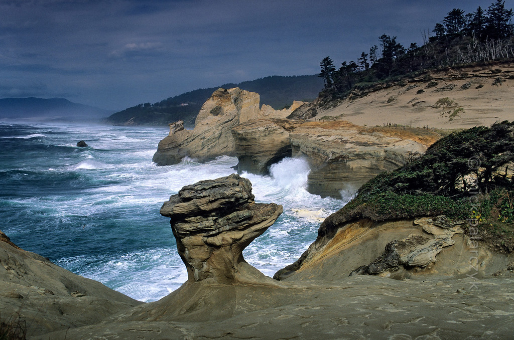 [USA.OREGON 28764] 'Cape Kiwanda.'  The sandstone escarpment of Cape Kiwanda, just north of Pacific City, is a good place to experience spectacular wave action if seas are rough. The mushroom shaped rock is a product of wind erosion. Photo Mick Palarczyk.