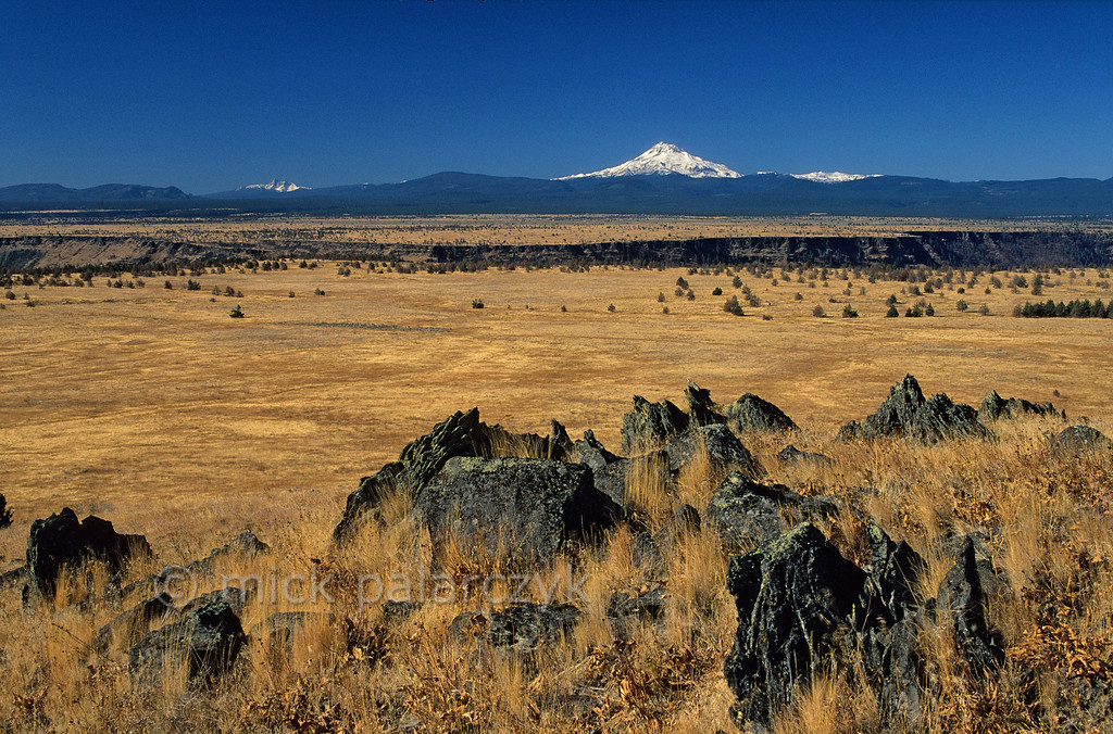 [USA.OREGON 28849]