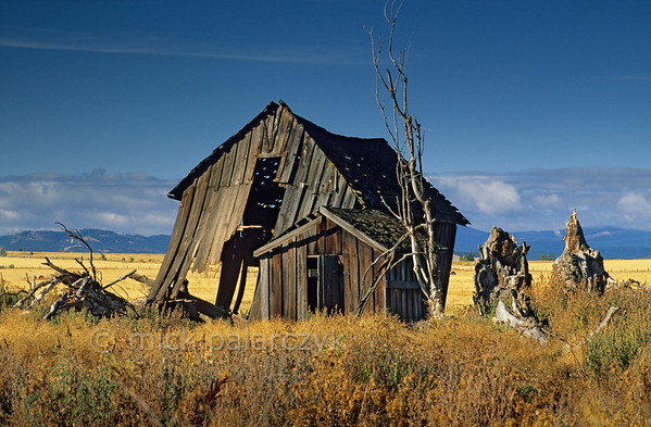 [USA.OREGON 28860] 'Barn near Maupin.'  	A dilapidated barn northwest of Maupin struggles to keep standing. Photo Mick Palarczyk.
