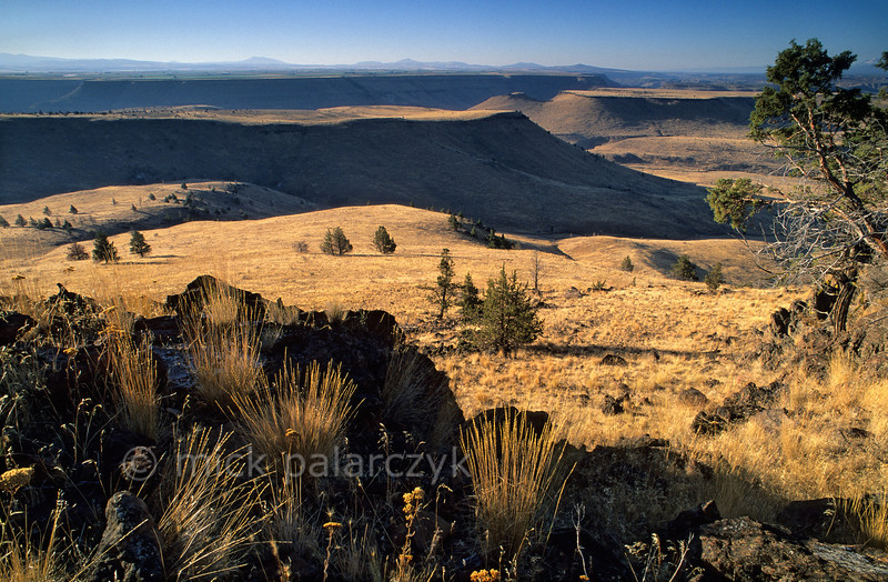 [USA.OREGON 28824] 'Tablelands near Deschutes River.'  Tablelands near the canyon of the Deschutes River, seen from Tee Wees Butte, north of Warm Springs town. These lands are part of the Warm Springs Indian Reservation. Photo Mick Palarczyk.