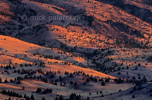 [USA.OREGON 28848] 'Valley of Warm Springs River.'  	The first rays of the rising sun play along the northern valley slopes of the Warm Springs River in the Warm Springs Indian Reservation, north of Warm Springs town. Photo Mick Palarczyk.