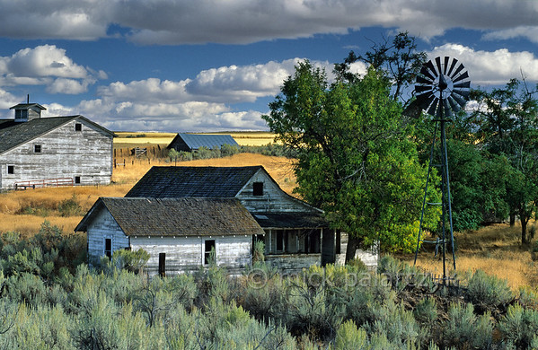 [USA.OREGON 28863] 'Deserted farm near Kent.'  	Deserted farm on the plains of central Oregon, northwest of the village of Kent and 25 km east of Maupin. Photo Mick Palarczyk.