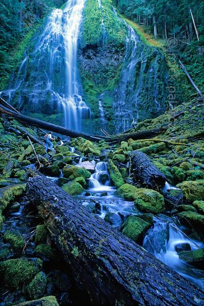 [USA.OREGON 28857]